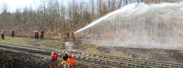 Bahnbordbrand