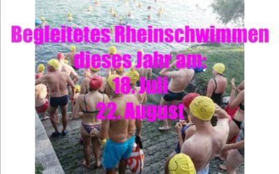 Begleitetes Rheinschwimmen